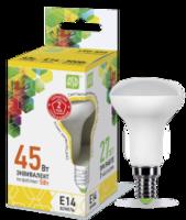 ASD Лампа светодиодная LED-R50-standard 5Вт 160-260В Е14 3000К 450Лм 4690612001531
