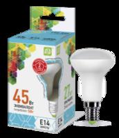 ASD Лампа светодиодная LED-R50-standard 5Вт 160-260В Е14 4000К 450Лм 4690612001517