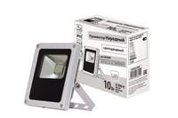 TDM прожектор светодиодный 10W 6500К, серый