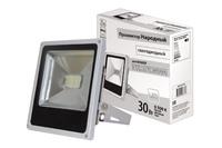 TDM прожектор светодиодный 30W 6500К, серый